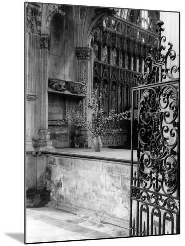 Beverley Minster Gate--Mounted Photographic Print
