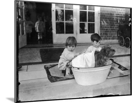 Bathing the Dog--Mounted Photographic Print
