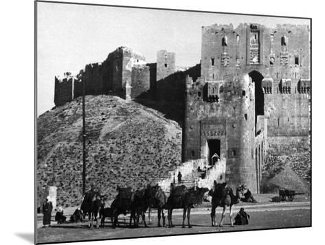 Citadel of Aleppo--Mounted Photographic Print