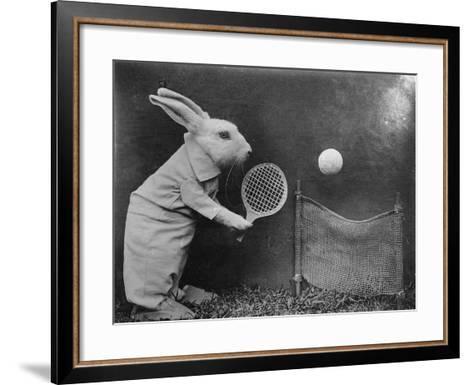Bunny Tennis--Framed Art Print