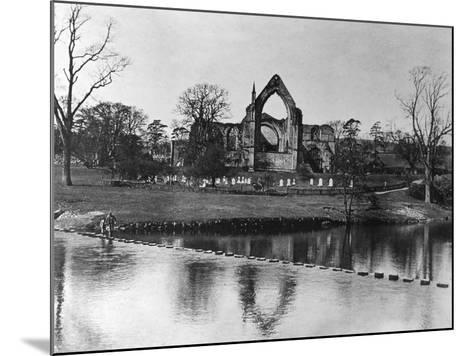 Bolton Abbey--Mounted Photographic Print