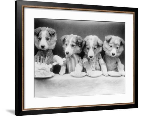 Dog's Birthday Party--Framed Art Print