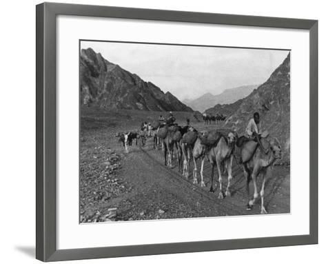 Camel Caravan--Framed Art Print