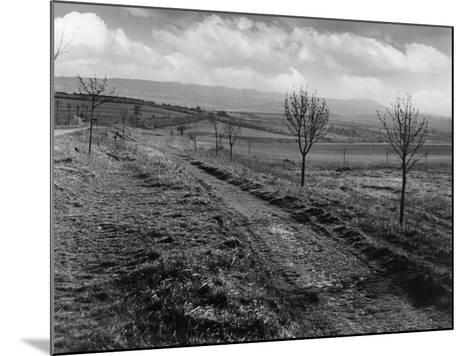 Icknield St. Roman Road--Mounted Photographic Print