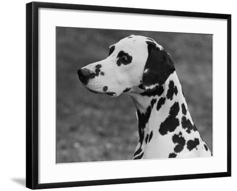 Josephine of Ilesberry Head Study-Thomas Fall-Framed Art Print