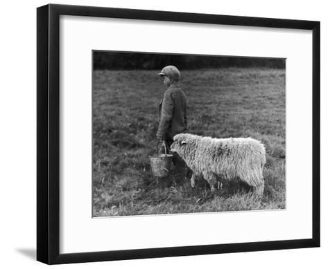 Little Boy Carring a Metal Pail of Feed is Followed by a Hungry Sheep!--Framed Art Print
