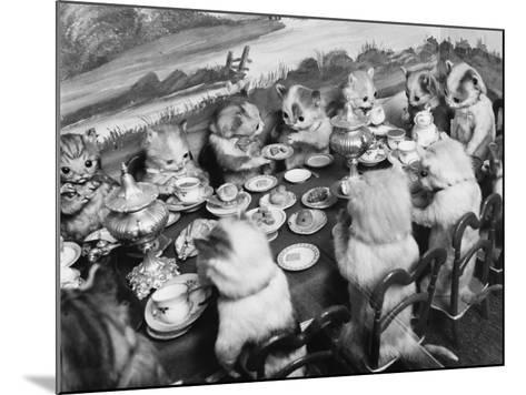 Stuffed Kittens Lunch--Mounted Photographic Print