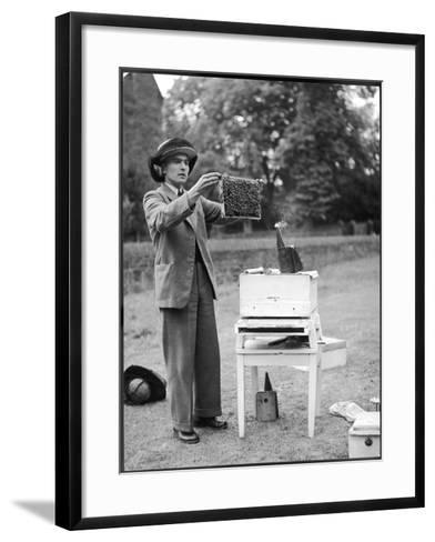 The Apiarist - a Bee Keeper Demonstrating the Examination of Frames of Brood--Framed Art Print