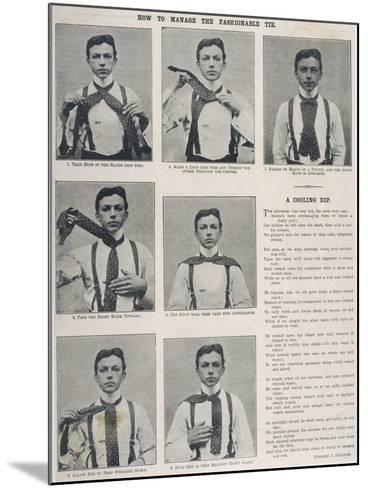 How to Tie the Ascot Necktie--Mounted Photographic Print