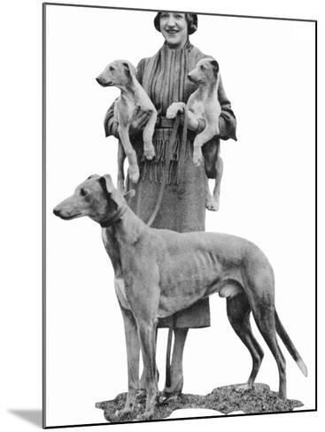Mrs Arundel Kempton with Mick the Miller and Puppies--Mounted Photographic Print