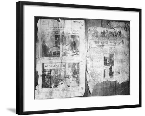 An Antarctic Bystander--Framed Art Print