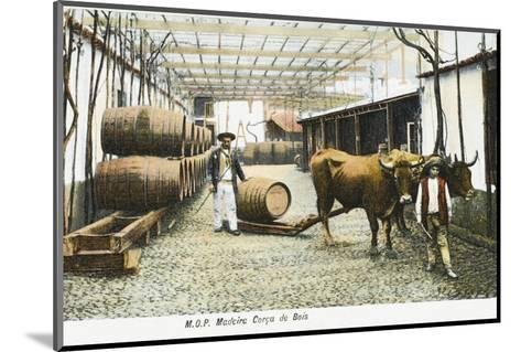 Madeira Barrels - Madeira, Portugal--Mounted Photographic Print