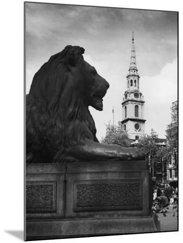 Landseer Lion--Mounted Photographic Print