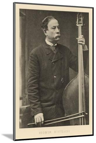 Italian Bass-Player--Mounted Photographic Print