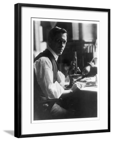 Sir Alexander Fleming - Scottish Bacteriologist at His Desk with His Microscope--Framed Art Print