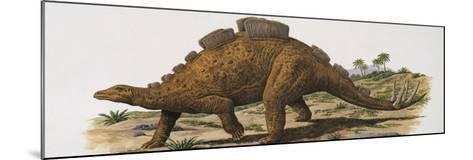 Wuerhosaurus Dinosaur Walking on a Landscape--Mounted Photographic Print