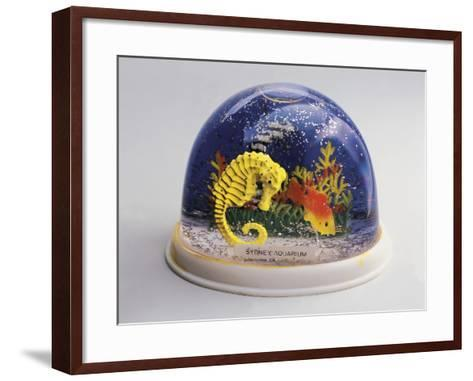 Close-Up of Figurines of a Sea Horse and a Fish in a Snow Globe--Framed Art Print