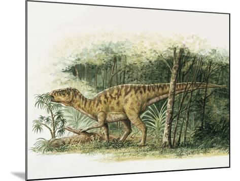 Rhabdodon Dinosaur Eating Plants in the Forest--Mounted Photographic Print