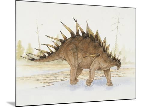 Kentrosaurus Dinosaur Standing in Water--Mounted Photographic Print