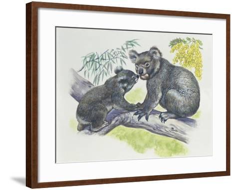 Close-Up of a Female Koala with a Joey (Phascolarctos Cinereus)--Framed Art Print