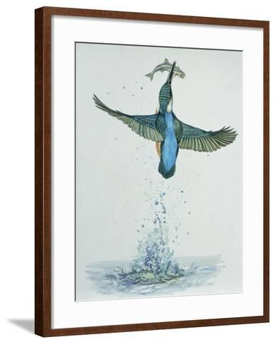 Close-Up of a Common Kingfisher Gripping a Fish (Alcedo Atthis)--Framed Art Print