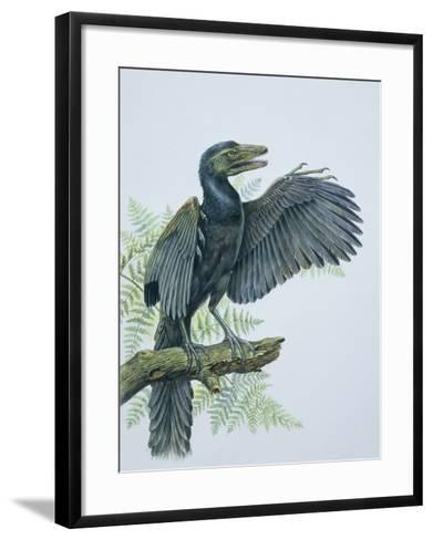 Close-Up of an Archaeopteryx Perching on a Branch (Archaeopteryx Lithographica)--Framed Art Print