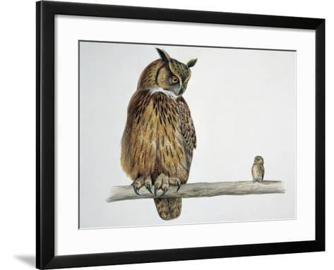 Close-Up of an Eurasian Eagle Owl (Bubo Bubo) Perching on a Branch with an Eurasian Pygmy Owl--Framed Art Print