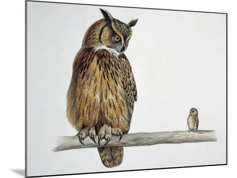 Close-Up of an Eurasian Eagle Owl (Bubo Bubo) Perching on a Branch with an Eurasian Pygmy Owl--Mounted Photographic Print