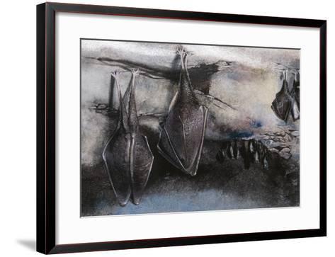 Greater Horseshoe (Bat Rhinolophus Ferrumequinum), Illustration--Framed Art Print