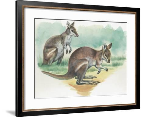 Close-Up of a Wallaby Kangaroo with its Joey--Framed Art Print