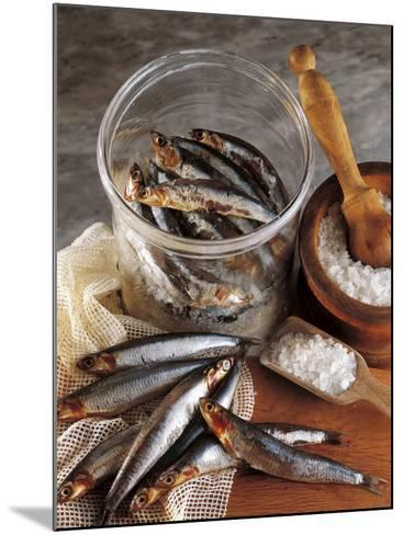 High Angle View of Anchovies in a Jar-P^ Martini-Mounted Photographic Print