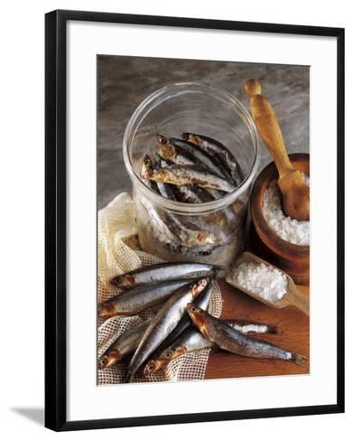 High Angle View of Anchovies in a Jar-P^ Martini-Framed Art Print