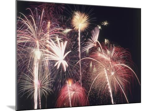 A View of Many Colorful Sparkling Fourth of July Fireworks Against the Nighttime Sky-Jeff Foott-Mounted Photographic Print