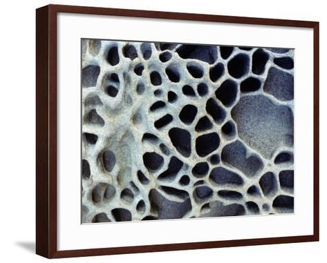 Close Up of Patterns in the Coastal Sand of Puget Sound, Washington, Usa-Jeff Foott-Framed Art Print