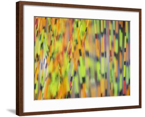 China, Colorful Floating Marks of Fish Bait-Keren Su-Framed Art Print