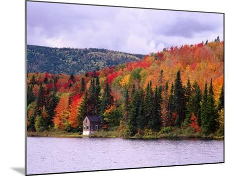 A Cabin Sits Nestled Among Autumn Colors-Jeff Foott-Mounted Photographic Print