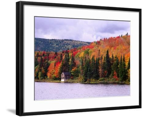 A Cabin Sits Nestled Among Autumn Colors-Jeff Foott-Framed Art Print