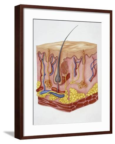 Close-Up of Human Skin Structure--Framed Art Print