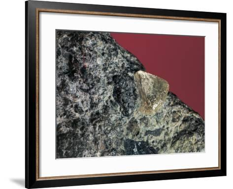 Close-Up of a Rough Diamond-C^ Bevilacqua-Framed Art Print