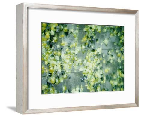 Peas in Water--Framed Art Print