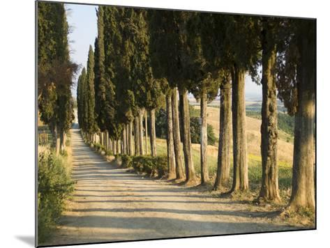 View of Countryside Near in Siena, Italy--Mounted Photographic Print