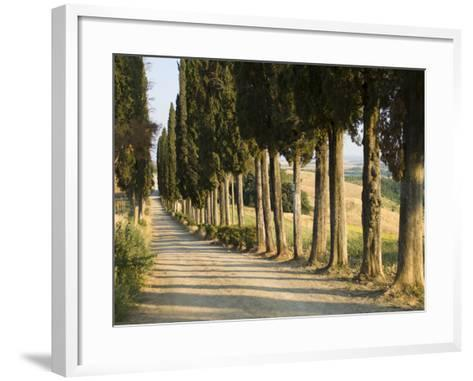 View of Countryside Near in Siena, Italy--Framed Art Print