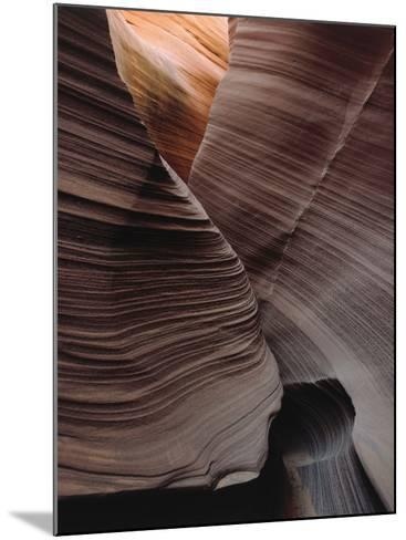 Grooves Decorate Curved Slot Canyon Walls-Jeff Foott-Mounted Photographic Print
