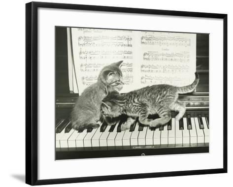 Two Kitten Playing on Piano Keyboard-George Marks-Framed Art Print