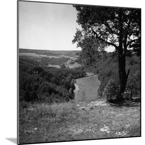 Bench Under Tree-George Marks-Mounted Photographic Print