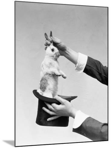 Hands of Magician Performing Magic Trick, Pulling Rabbit Out of Top Hat-H^ Armstrong Roberts-Mounted Photographic Print