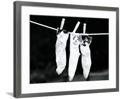 Three Kittens in Socks-H^ Armstrong Roberts-Framed Art Print