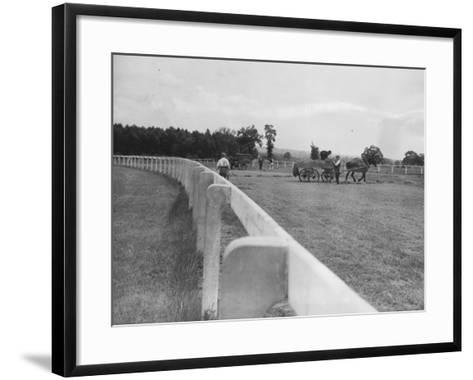 Newbury Race Course--Framed Art Print