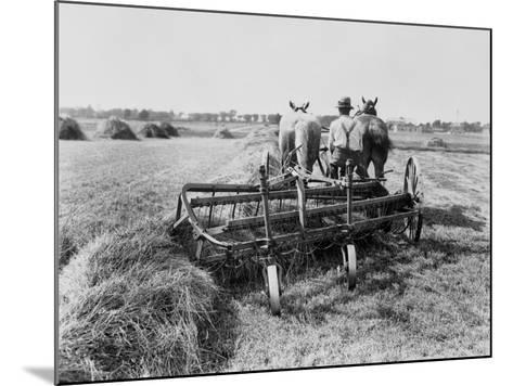 Haymaking in Canada--Mounted Photographic Print