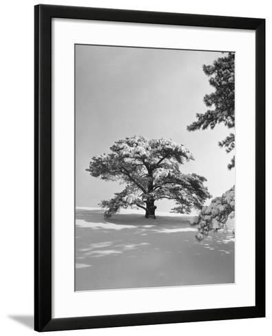 Winter Landscape-George Marks-Framed Art Print